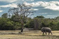 Explore the amazing destinations in Sri Lanka